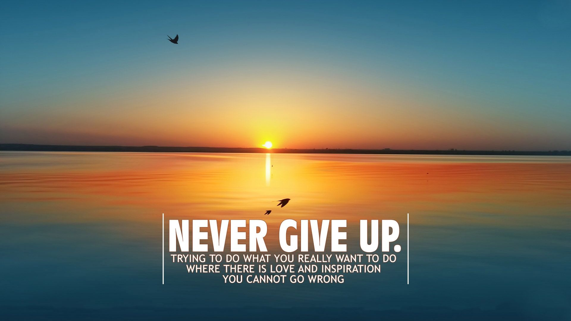 Famous Quotes On Giving Up Quotesgram
