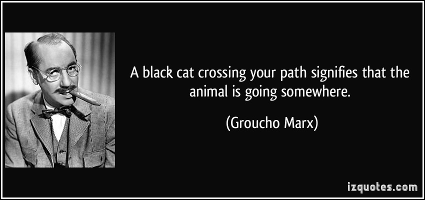 Black Cat Crossing Your Path