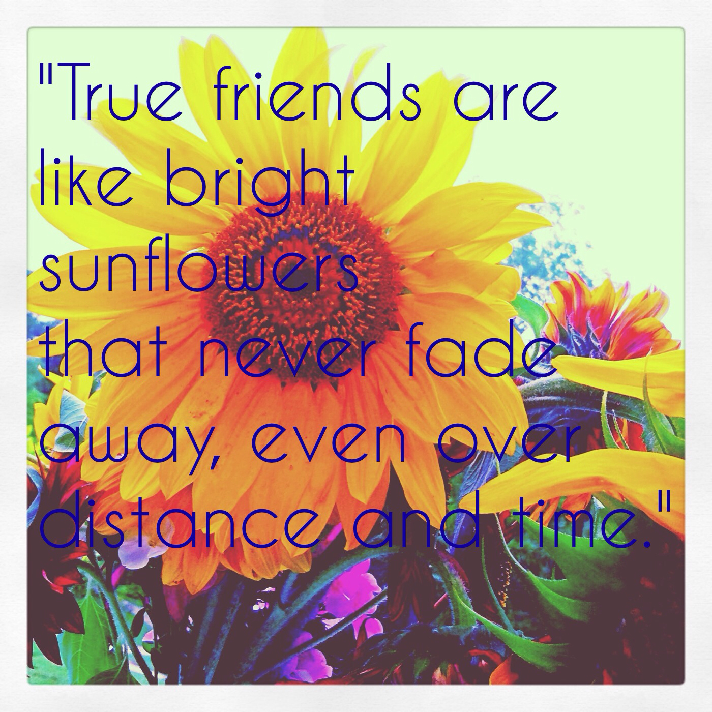 Quotes And Images About Friendship: Sunflower Sayings And Quotes. QuotesGram