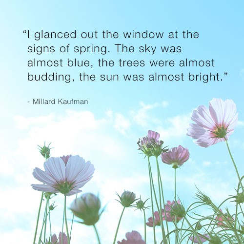 Inspirational Quotes About Positive: Spring Quotes Flowers. QuotesGram