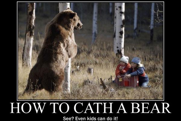 Polar Bear 42 D 25 Funny Bear Quotes. Quo...