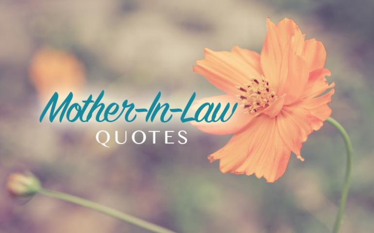 Mother In Law Quotes Nice. QuotesGram