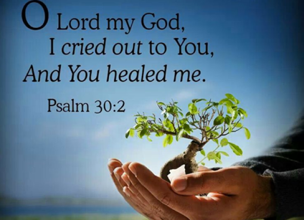 Inspirational Bible Quotes On Healing Quotesgram