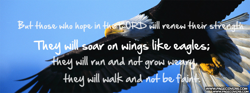 Soar Like An Eagle Quotes. QuotesGram