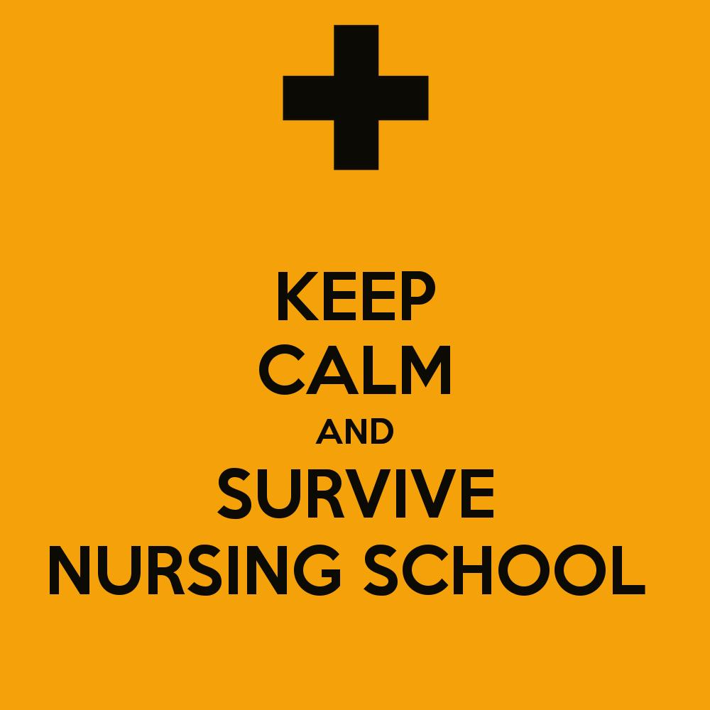 Surviving Nursing School Quotes. QuotesGram