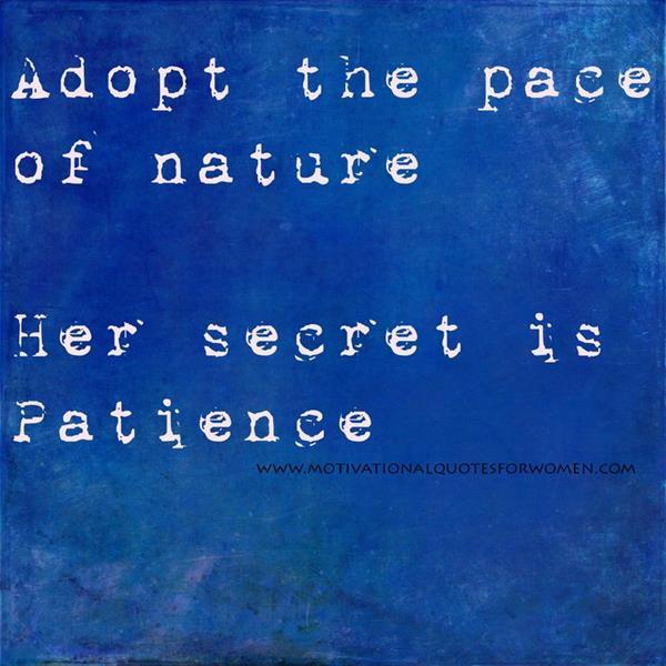 Confucius Quotes Jokes Quotesgram: Confucius Quotes On Patience. QuotesGram