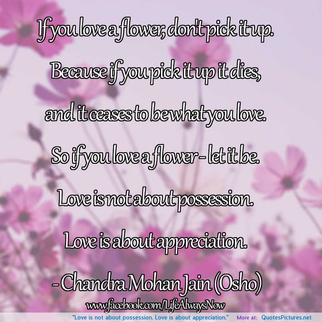 New Relationship Love Quotes: Appreciation Poems Amp Quotes. QuotesGram