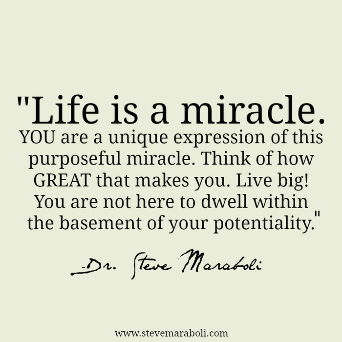 Motivational Inspirational Quotes: Miracle Of Life Quotes. QuotesGram