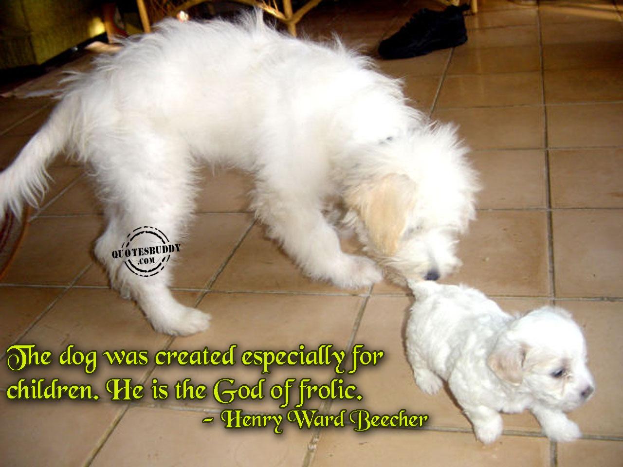 Cute Funny Animal Quotes. QuotesGram