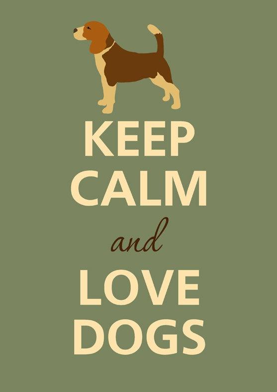 Beagle Dog Quotes Quotesgram