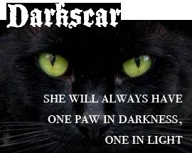 Best Worrrior Cat Quotes