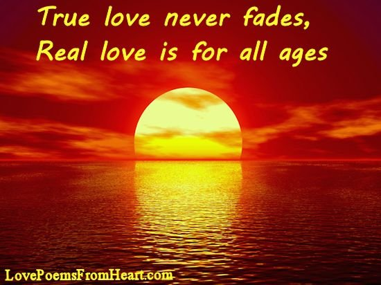 love conquers all bible quotes quotesgram