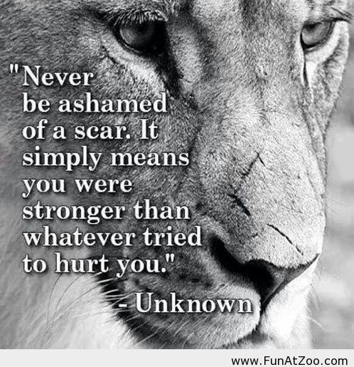 Tattoo Quotes About Scars. QuotesGram