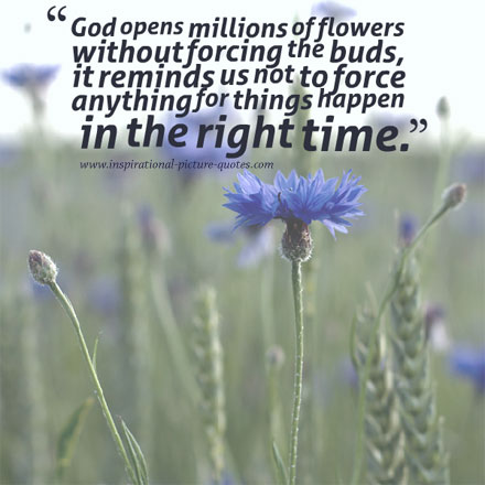 and god quotes about flowers quotesgram