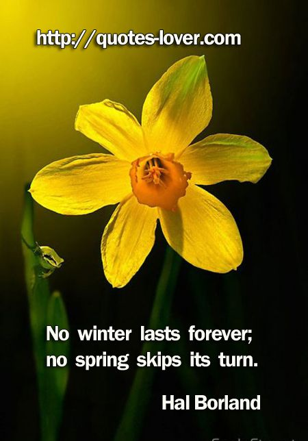 Winter To Spring Quotes. QuotesGram