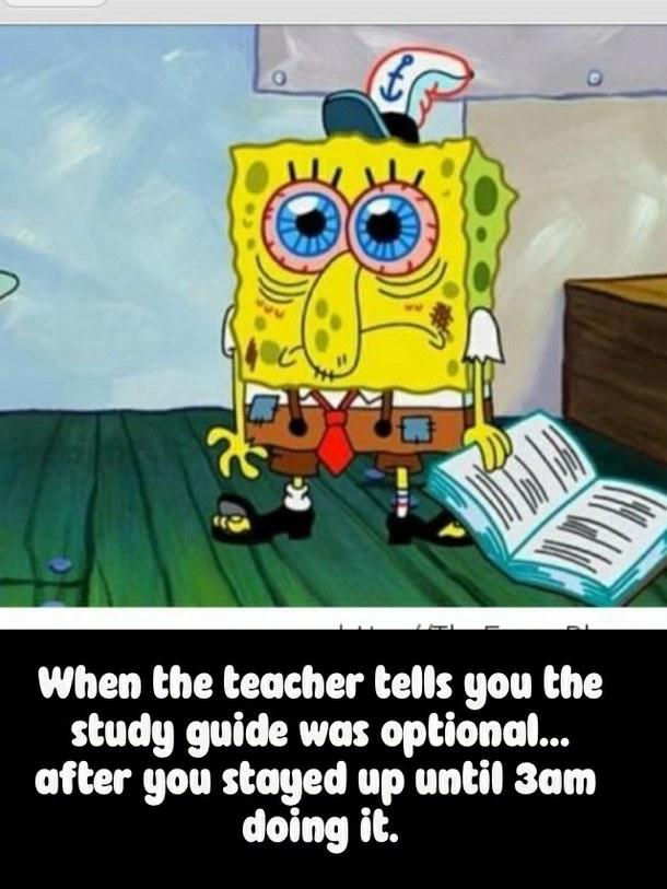 Spongebob Quotes About School. QuotesGram