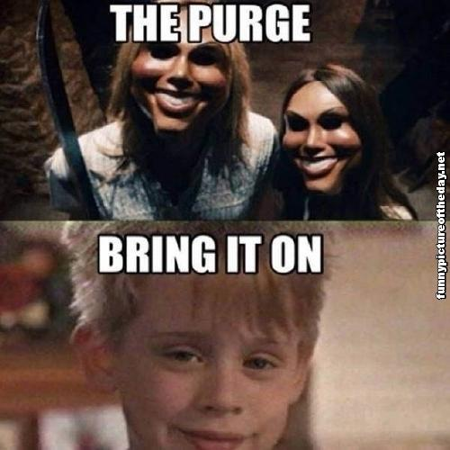 Funny Home Alone Quotes: The Purge Quotes. QuotesGram