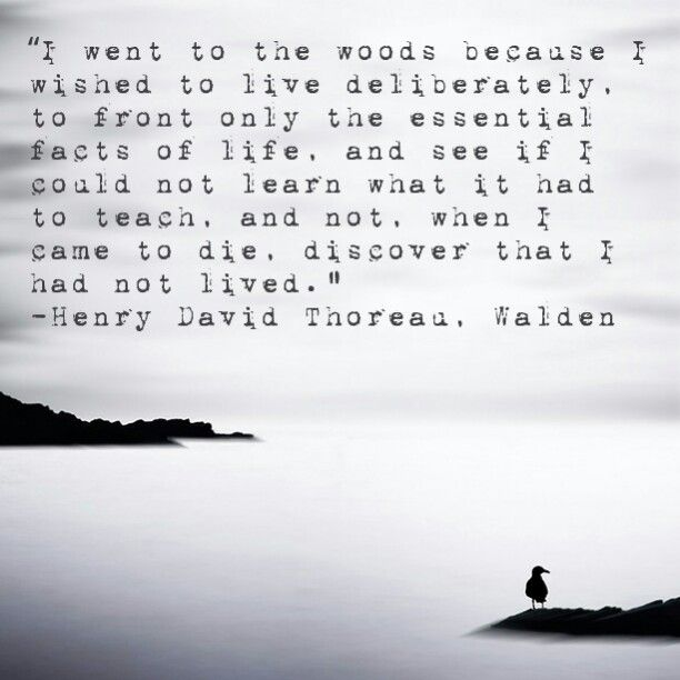 Meaning Of Quote: Meaning Of Thoreau Quotes. QuotesGram