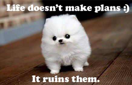 Inspirational Quotes With Cute Puppy