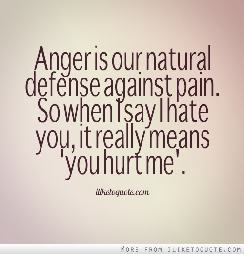 Love And Anger Quotes: Anger And Hate Quotes. QuotesGram