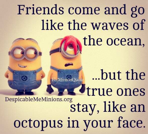 Friend Come And Go But True Friends Quotes : Despicable me quotes friendship quotesgram