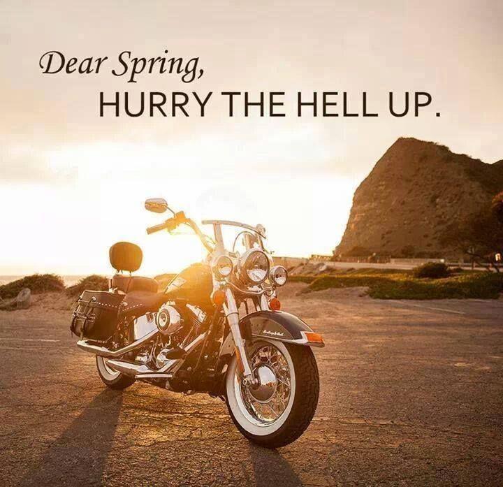 spring please quotes  quotesgram