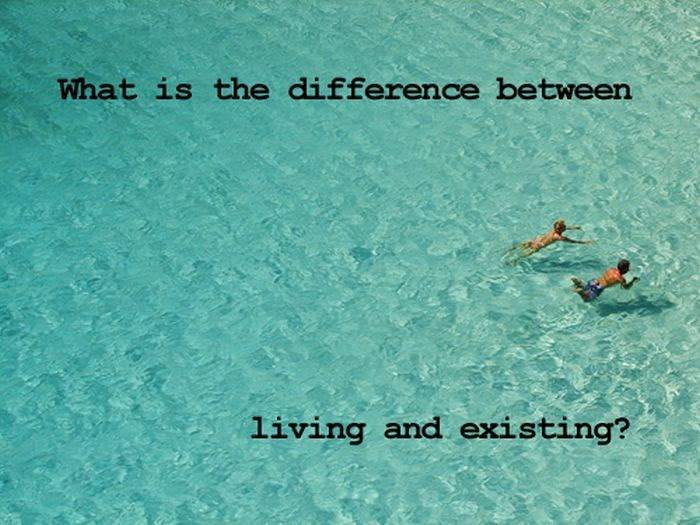 what are the differences between living