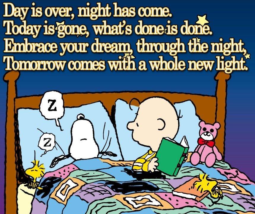 Peanuts Inspirational Quotes. QuotesGram