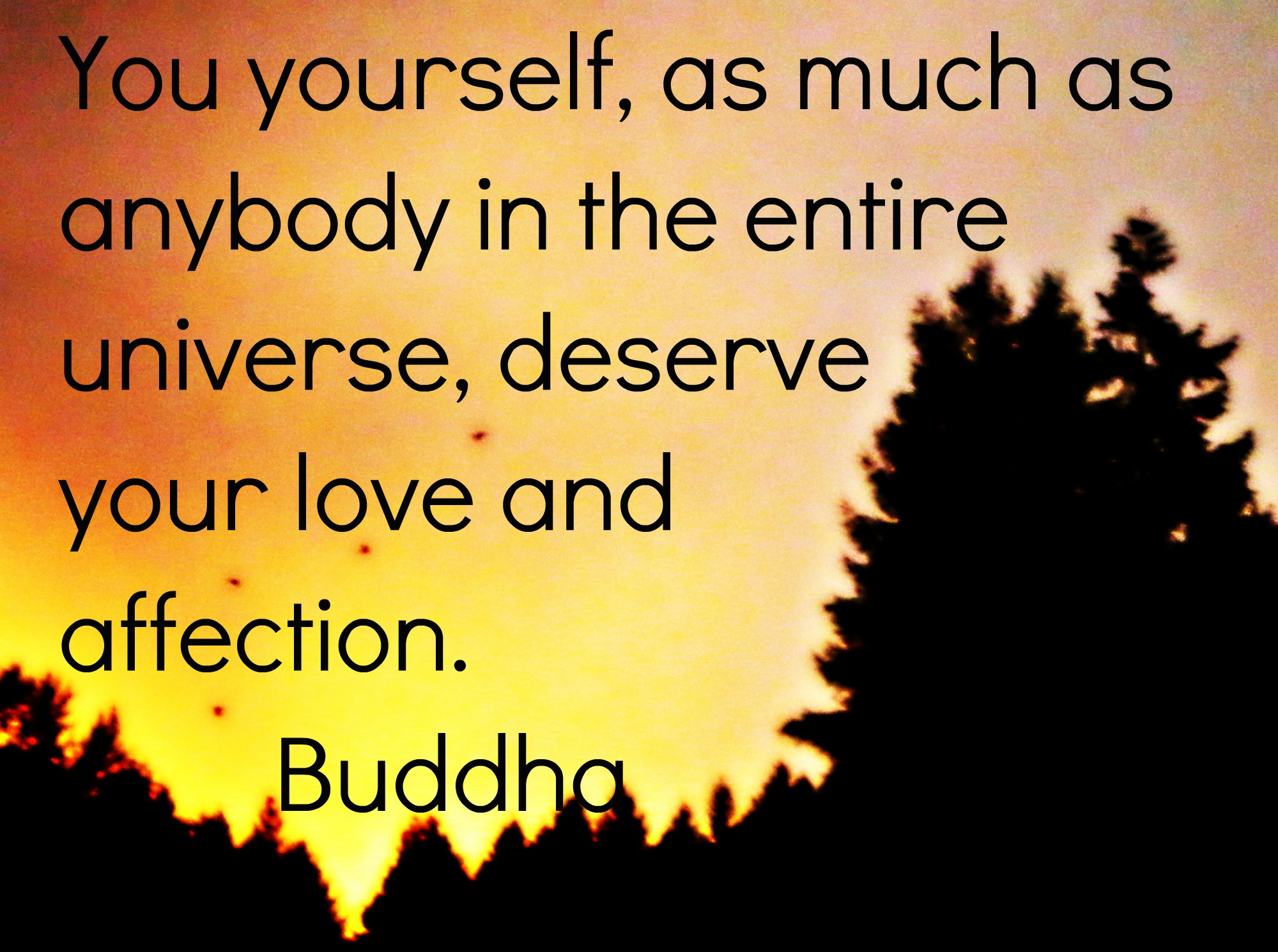 buddhism as freedom from negativity essay Outline format for initial speechgeneral purpose: to informspecific purpose: to inform the class on buddhismcentral idea: today i am going to inform you of who the.