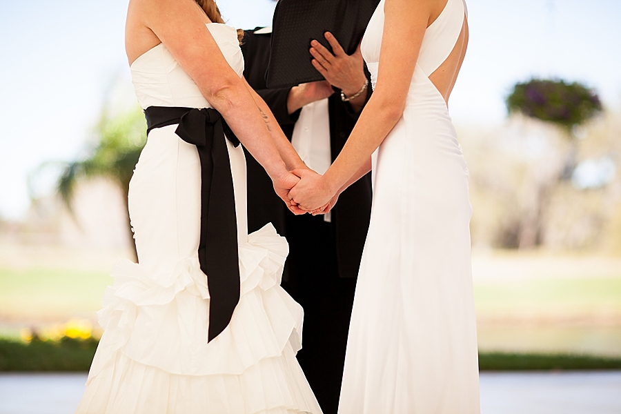 Looking for the best lesbian wedding planners and books