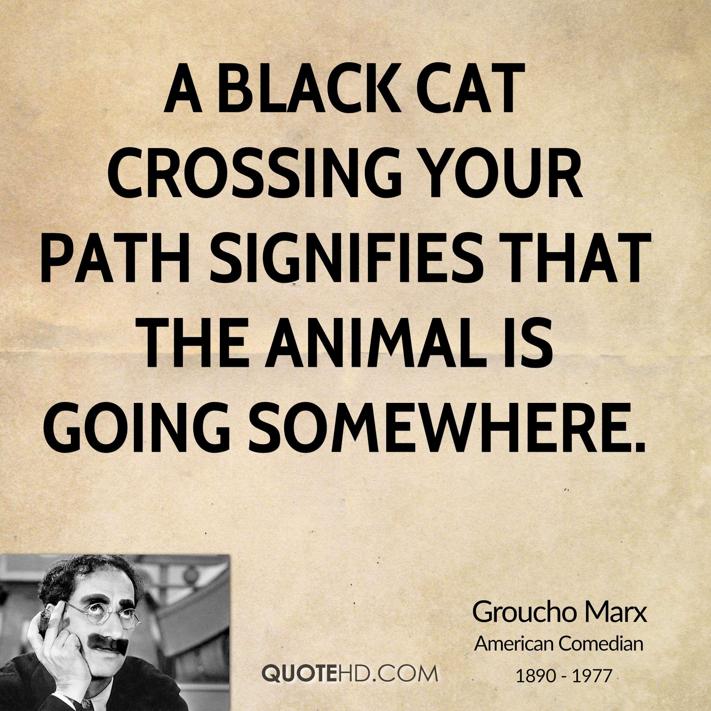 Groucho Marx Quote Black Cat