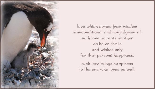 parents unconditional love quotes quotesgram