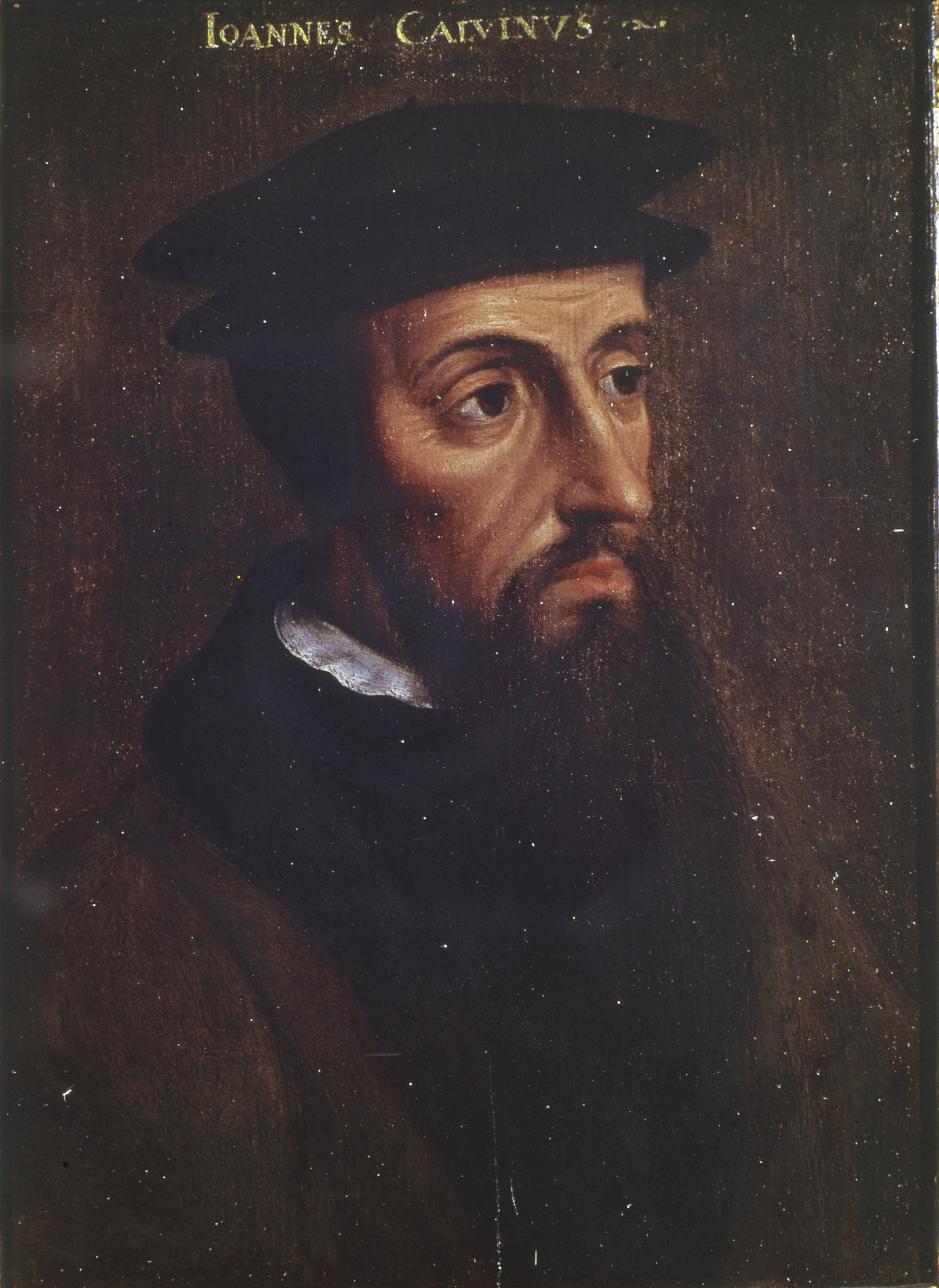 john calvin and martin luther John calvin is a principal figure of the protestant reformation martin luther, along with henry viii, separated protestantism from the roman catholic church, and.
