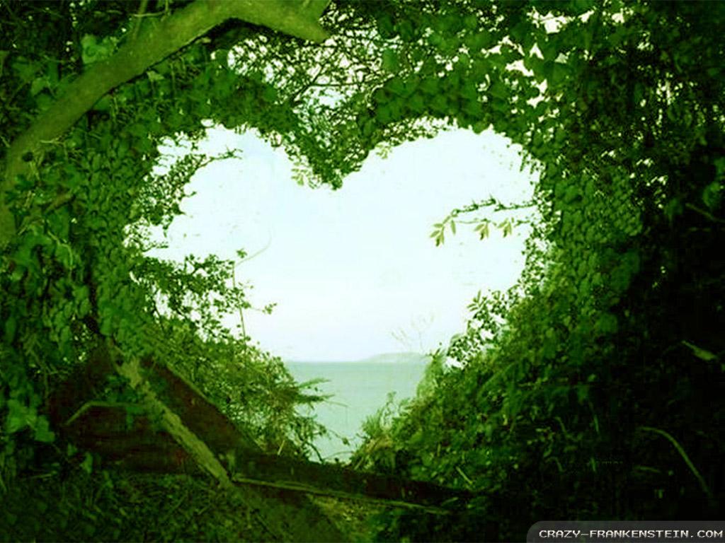 Romanticism quotes on nature quotesgram - Love nature wallpaper hd ...