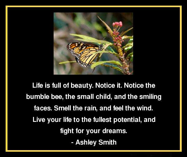 Live Your Life Quotes And Sayings. QuotesGram