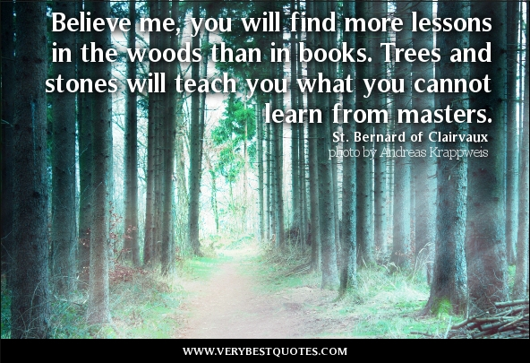 Tree Of Life Learning Quotes. QuotesGram