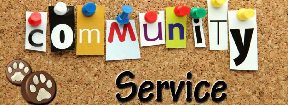 Community service activity essay