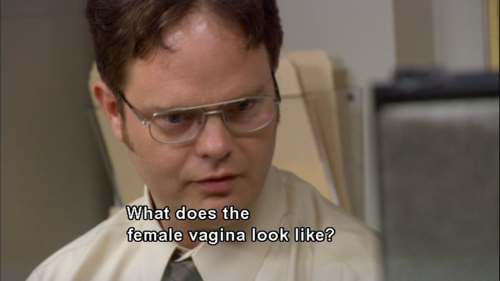 dwight schrute quotes question quotesgram