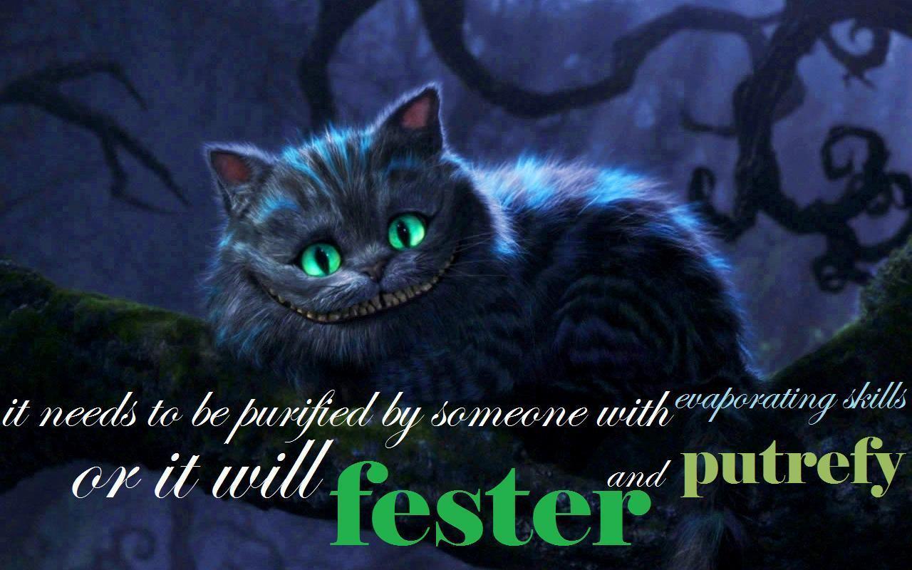 Alice In Wonderland Cat Quotes Quotesgram