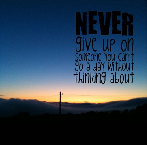 Never Giving Up Quotes: Never Give Up On Love Quotes. QuotesGram