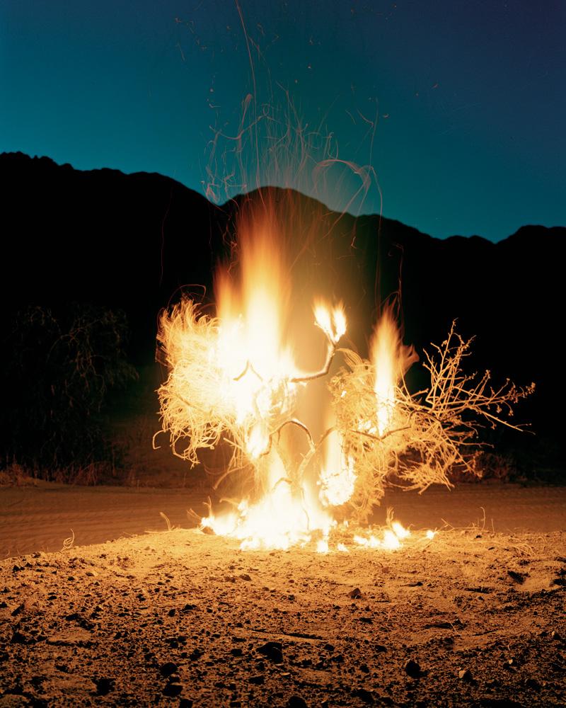 Burning Bush Quotes. Q...