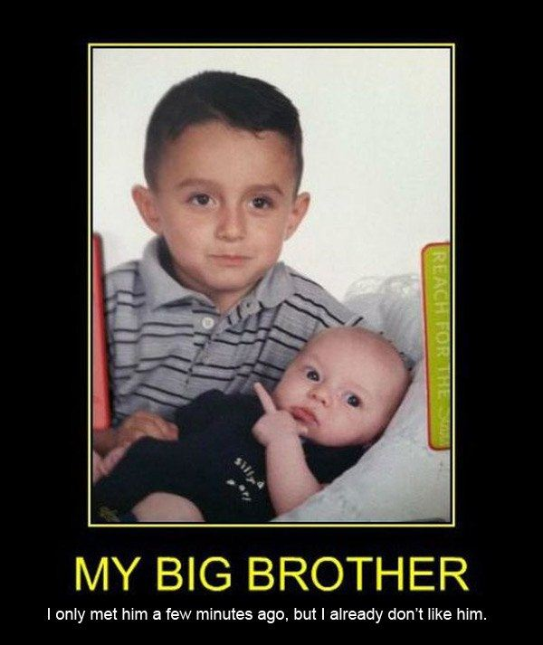 Funny Brother Quotes And Sayings: Big Brother Funny Quotes. QuotesGram