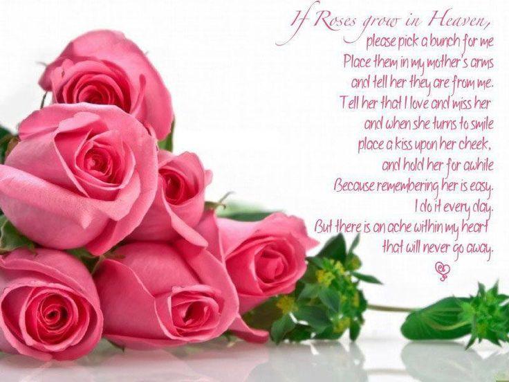 Image result for Roses for grandma