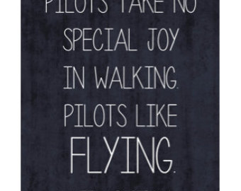 Pilot Quotes And Sayings Quotesgram