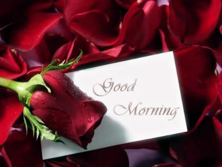 Romantic Good Morning Beautiful Quotes Quotesgram