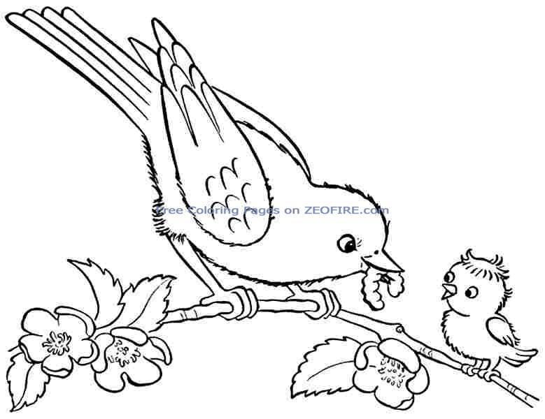 preschool bird coloring pages - photo#12
