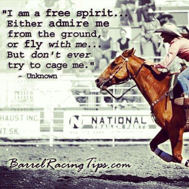 Horse Racing Sayings