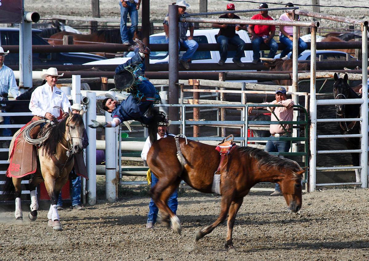 Funny Bull Riding Quotes: Bronc Riding Quotes. QuotesGram
