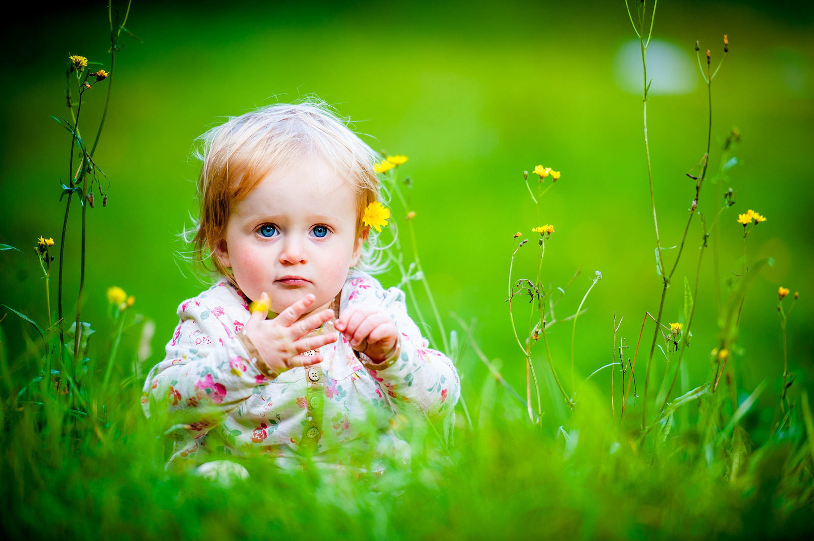 Baby Quotes And Flowers. QuotesGram