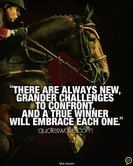 Quotes About Embracing Challenges. QuotesGram
